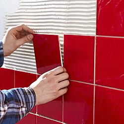 Wall Adhesive